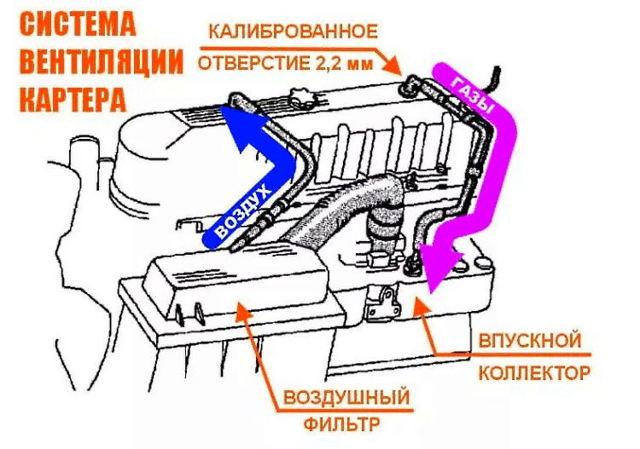 Вентиляция картера: принцип работы, устройство. Зачем нужна чистка системы принудительного вентилирования картерных газов и как проверить клапан pcv