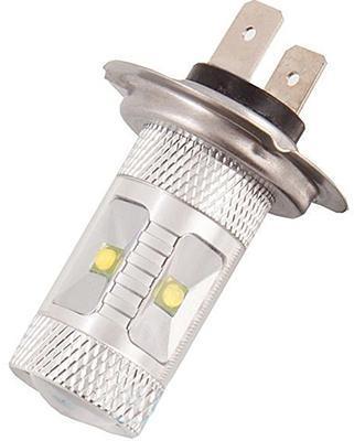 Автомобильные лампы: каталог, отзывы, лучшие виды